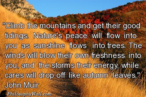 15679-climb-the-mountains-and-get-their-good-tidings--wallpaper-500x333
